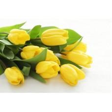 Тюльпан 20см