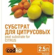 Субстрат Садко для цитрусовых 2,5л